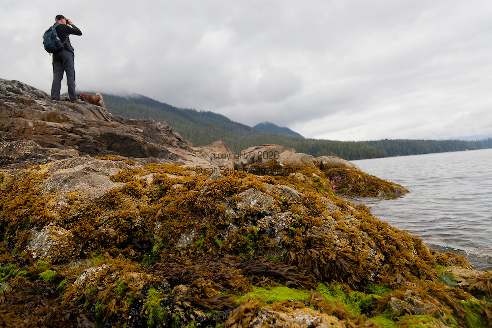 Eagle Nook Wilderness Resort and Spa is located on a remote area of Vancouver Island.   Hiking through the private forests is one of the many adventures available to guests at the resort.  Guest Paul Römer looks out to sea.