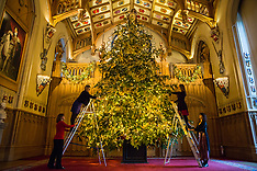 2018-11-30 Windsor Castle Christmas tree