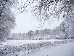 Hilverbeek, winter,  's-Graveland, Wijdemeren, Noord Holland, Netherlands