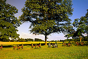 Image of cannons at Valley Forge National Historical Park, Pennsylvania, American Northeast