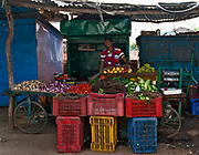 Selling fruit and vegitables along the road close to Silpari, Madhya Pradesh, India.