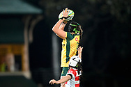 SYDNEY, AUSTRALIA - JULY 19: Michaela Leonard (4) of the Wallaroos goes up for the ball during the second rugby test match between the Australian Wallaroos and Japan on July 19, 2019 at North Sydney Oval in Sydney, Australia. (Photo by Speed Media/Icon Sportswire)