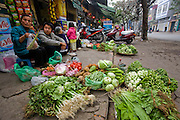 Rice farmer's wife selling vegetables on the streets of Hanoi. Rice farmer Nguyen Van Theo, age 51, of rural Tho Quang village, outside Hanoi, is a rice farmer with three children who lived hand-to-mouth until wife Vie Thi Phat, 53, moved to Hanoi with her sisters to sell vegetables on a street corner to support their families. Through the years she has managed to come home to the village only once every two months. (Nguyen Van Theo is featured in the book What I Eat: Around the World in 80 Diets.) MODEL RELEASED.