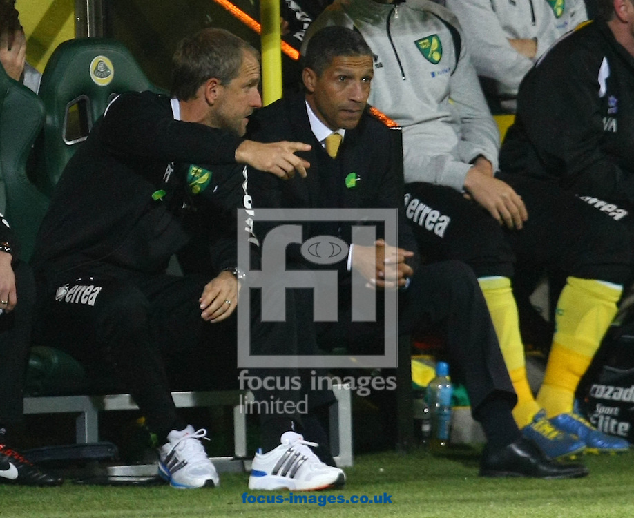 Picture by Paul Chesterton/Focus Images Ltd +44 7904 640267.20/10/2012.Norwich First Team Coach Paul Trollope and Norwich Manager Chris Hughton during the Barclays Premier League match at Carrow Road, Norwich.