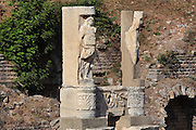 Statues of the Temple of Domitian, Domitian Square, Ephesus, Izmir, Turkey. This was the first structure in Ephesus to be dedicated to an emperor. It was built on a 100x50m terrace on vaulted foundations. The temple had 8 columns on the short side and 13 columns on the long side, and 4 additional columns in front of the cella. When Domitian was murdered, in order to not lose its neocoros status, the Ephesians re-dedicated the temple to Vespasian, the father of Domitian. Ephesus was an ancient Greek city founded in the 10th century BC, and later a major Roman city, on the Ionian coast near present day Selcuk. Picture by Manuel Cohen