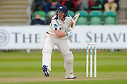 Yorkshire's Andrew Gale during the Specsavers County Champ Div 1 match between Somerset County Cricket Club and Yorkshire County Cricket Club at the County Ground, Taunton, United Kingdom on 17 May 2016. Photo by Graham Hunt.