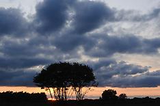 Westerheide, GNR, Hilversum, Noord Holland