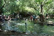 Israel, Upper Galilee, Tel Dan nature reserve, Children wading in the natural pools