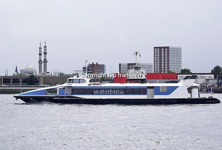 Nederland, Dordrecht, 30-7-2017De waterbus onderhoudt een verbinding over de nieuwe maas van Dordrecht Merwedekade naar de Erasmusbrug in Rotterdam.Foto: Flip Franssen