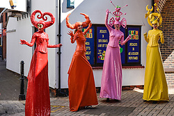 Jo Peacock and her stunningly colourful cohorts dressed as Candy Coloured stiltwalkers performing in South Woodham Ferrers town centre.