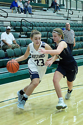 26 January 2019: Fieldcrest Knights v Ridgeview Mustangs Girls Basketball 3rd place game during the McLean County Tournament at Shirk Center in Bloomington Illinois