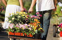 Young couple pulling cart with potted flowers in garden centre rear view (low section)