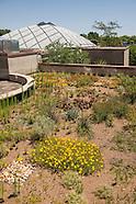 20140614 Rooftop Garden