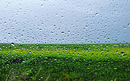 Raindrops on a window, scattered across the late winter green and yellow of wildflower fields in coastal California