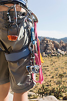 Climber with Carabineers Around Waist mid section back view