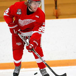 AURORA, ON - Jan 29 : Ontario Junior Hockey League Game Action between the Hamilton Red Wings and the Aurora Tigers, Nathan Gomes #96 of the Hamilton Red Wings Hockey Club during the pre-game warm-up.<br /> (Photo by Brian Watts / OJHL Images)