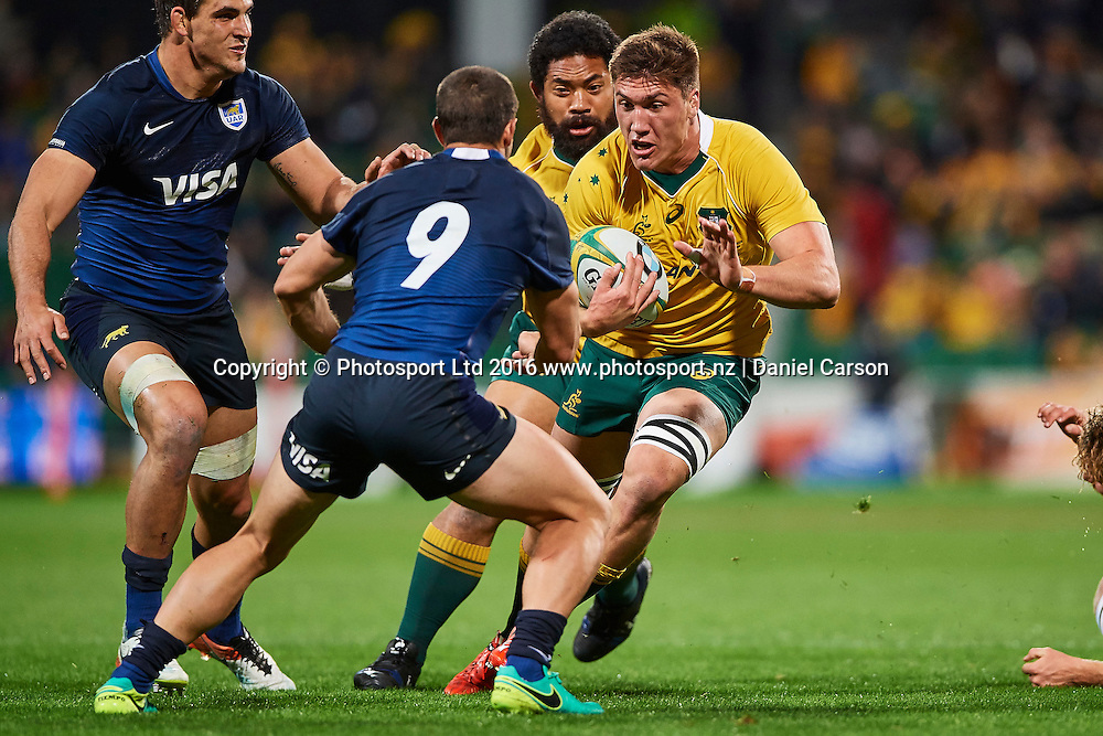 Sean McMahon of the Qantas Wallabies looks to push past Tomás Cubelli of the The Pumas (Argentina) during the Rugby Championship test match between the Australian Qantas Wallabies and Argentina's Los Pumas from NIB Stadium - Saturday 17th September 2016 in Perth, Australia. © Copyright Photo by Daniel Carson / www.photosport.nz)
