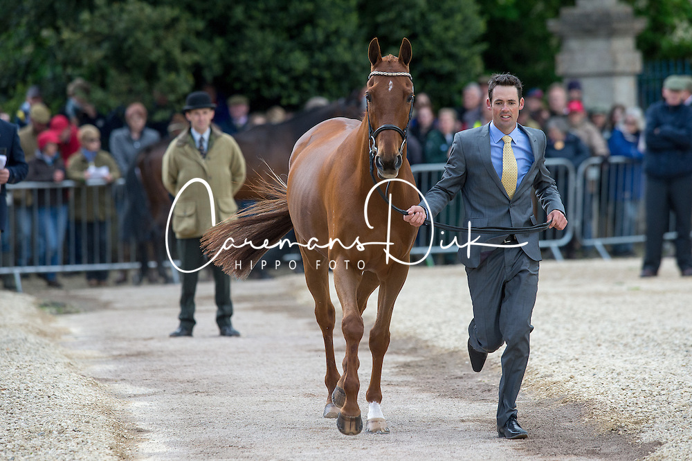 Paget Jonathan, (NZL), Clifton Lush<br /> First Horse Inspection - Mitsubishi Motors Badminton Horse Trials <br /> Badminton 2015
