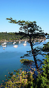 Fossil Bay, Sucia Island, San Juan Islands, Washington State