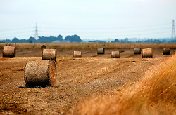 UK ENGLAND NORFOLK LAKESEND 7AUG06 - Straw bales on harvested agricultural land on the Norfolk and Cambridgeshire border...jre/Photo by Jiri Rezac..© Jiri Rezac 2006..Contact: +44 (0) 7050 110 417.Mobile:  +44 (0) 7801 337 683.Office:  +44 (0) 20 8968 9635..Email:   jiri@jirirezac.com.Web:    www.jirirezac.com..© All images Jiri Rezac 2006 - All rights reserved.
