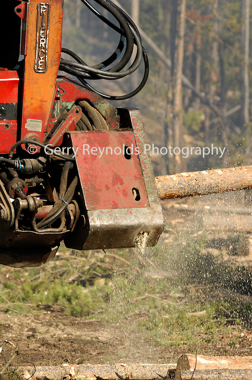 Logging, Caterpillar, Cat, Logging Equipment, Timber, Timber Harvest, Log, Lumber, Forest, Forestry, Logging, Logger, Loggers, Salmon Challis National Forest, Salmon-Challis National Forest, Idaho