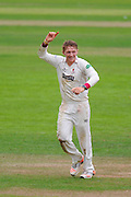 6 wickets for Dom Bess - Dom Bess of Somerset celebrates taking his 6th wicket on his debut County Championship match, dismissing Jeetan Patel of Warwickshire during the Specsavers County Champ Div 1 match between Somerset County Cricket Club and Warwickshire County Cricket Club at the Cooper Associates County Ground, Taunton, United Kingdom on 6 September 2016. Photo by Graham Hunt.