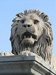 A statue of a lion guards the Széchenyi Chain Bridge over the Danube River, Budapest Hungary.