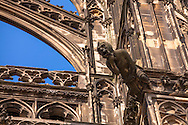 Europa, Deutschland, Koeln, Wasserspeier an der Suedseite des Doms.<br /> <br /> Europe, Germany, Cologne, gargoyle at the southern part of the cathedral.