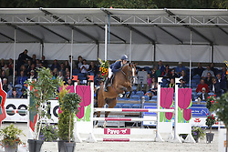 041 - Felix - Van Berkel Femke (NED)<br /> 4 Jarige Finale Springen<br /> KWPN Paardendagen - Ermelo 2014<br /> © Dirk Caremans