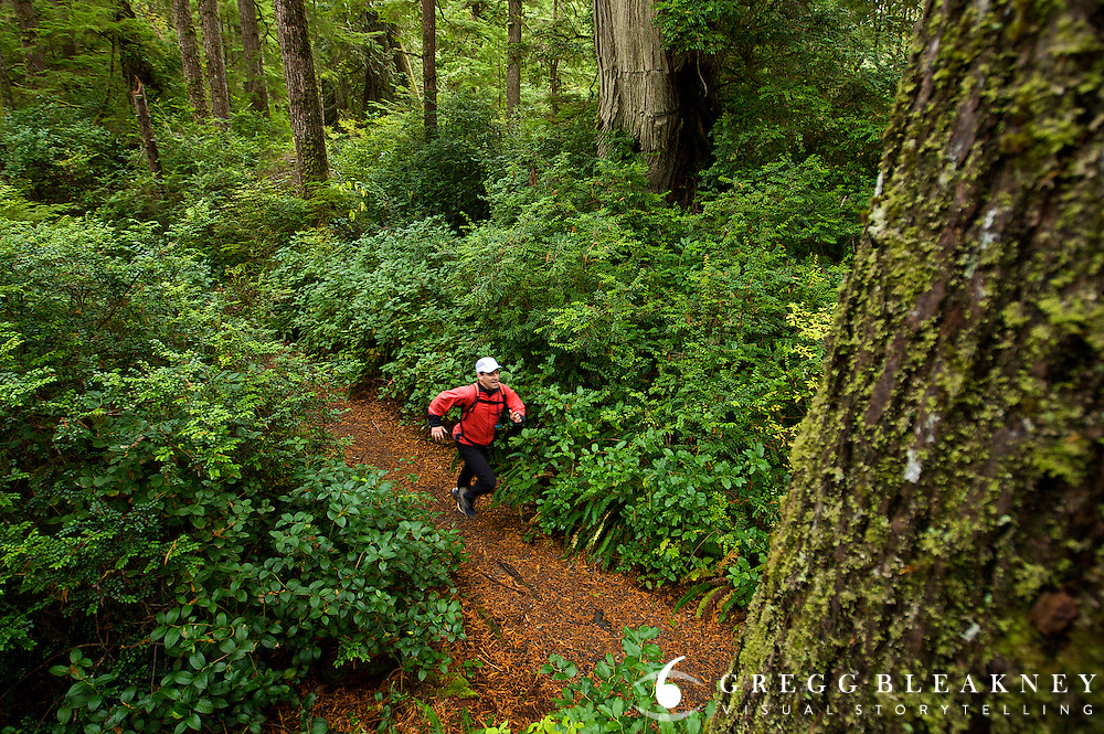 Trail Runner - Kalaloch Rainforest Trail - Olympic National Park - Washinton State - USA