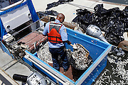 May 18, 2014 - Marina Del Rey, California, U.S - <br /> <br /> Thousands Of Dead Fish in Marina del Rey<br /> <br /> Thousands of dead fish were found floating in Marina Del Rey this weekend. Anchovies, stingrays, halibut, mackerels, sunfish and an octopus were among the thousands of dead fish that rose to the surface at Basin A of the marina near according to the Sheriff's Department. Why the fish washed ashore remains unknown, but the phenomenon allegedly happens once or twice a year. <br /> ©Exclusivepix