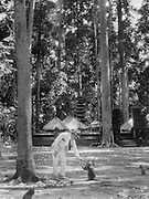 E. O. Hoppe, Feeding Monkey, Bali, Indonesia, Southeast Asia, 1930