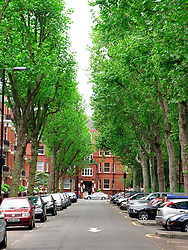 UK ENGLAND LONDON 19MAY08 - Leafy Grantully Road opposite the Paddington Recreational Ground in Maida Vale, a wealthy part of West London.. .jre/Photo by Jiri Rezac..© Jiri Rezac 2008..Contact: +44 (0) 7050 110 417.Mobile:  +44 (0) 7801 337 683.Office:  +44 (0) 20 8968 9635..Email:   jiri@jirirezac.com.Web:     www.jirirezac.com..© All images Jiri Rezac 2008 - All rights reserved.