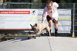 © Licensed to London News Pictures. 31/07/2020. London, UK. Joel Deason (44) and his dog Eroc or Eric (5) are both skateboarders. Eroc is seen skateboarding in Hackney Bumps, east London during one of the warmest day of the year. Eroc has 68.4k followers on Instagram. Joel said he never made Eroc skateboard and Eroc naturally develops his passion for skateboarding. Photo credit: Marcin Nowak/LNP