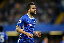 Cesc Fabregas of Chelsea - Mandatory by-line: Jason Brown/JMP - 08/05/17 - FOOTBALL - Stamford Bridge - London, England - Chelsea v Middlesbrough - Premier League