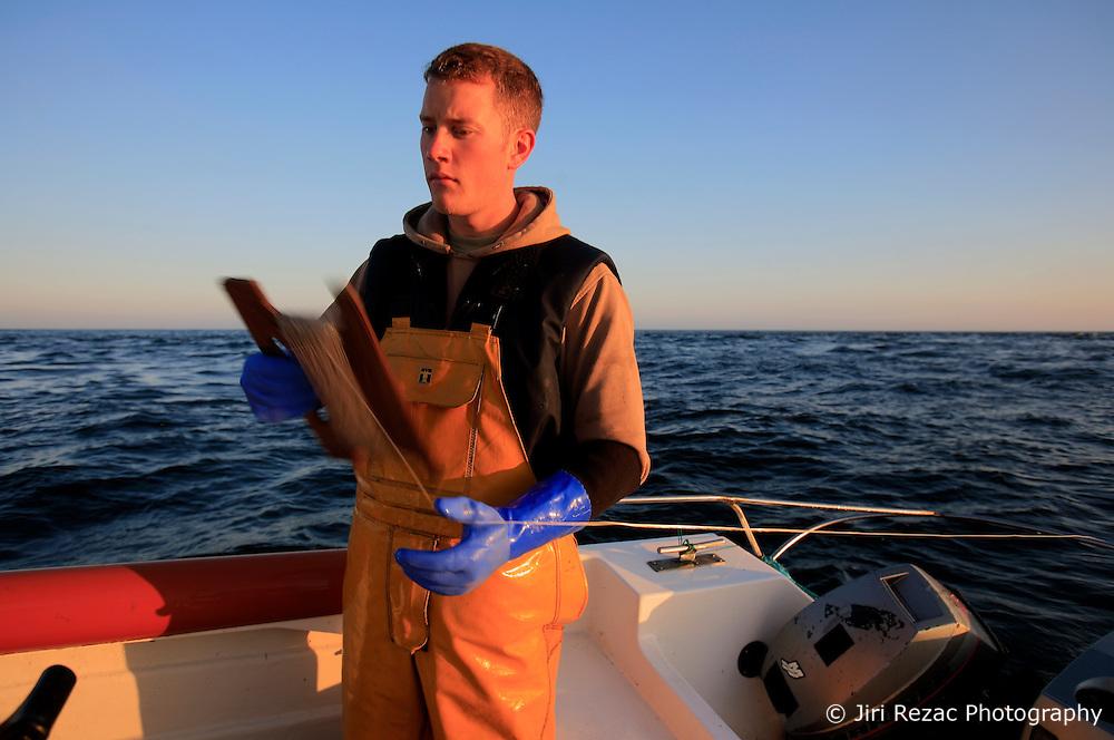 UK ENGLAND CORNWALL SENNEN COVE 11JUN08 - Handline fisherman Will Treneer (19) of Newlyn fishes for Mackerel off the coast of south-west Cornwall on his boat, the Cornish Rose...jre/Photo by Jiri Rezac / WWF UK..© Jiri Rezac 2008..Contact: +44 (0) 7050 110 417.Mobile:  +44 (0) 7801 337 683.Office:  +44 (0) 20 8968 9635..Email:   jiri@jirirezac.com.Web:    www.jirirezac.com..© All images Jiri Rezac 2008 - All rights reserved.