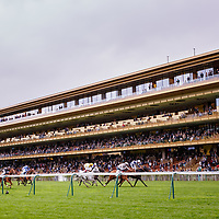 Longchamp 08/04/2018