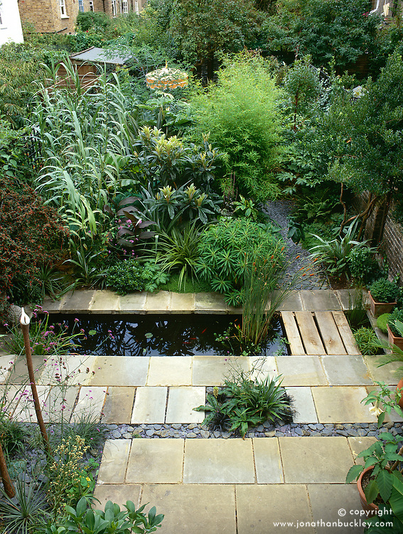 General view showing patio and canal with planting of exotic foliage in Declan Buckley's London town garden. Euphorbia mellifera, Arundo donax, Astelia nervosa, Eriobotrya japonica, Canna indica purpurea and Pittosporum tobira 'Nanum'