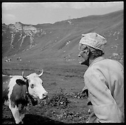 """Aloys """"Mami"""" Castella spent his lifetime in the mountains. Während 50 Jahren arbeitet Aloys """"Mami"""" Castella als Rinderhirt. Täglich bringt er den anfallenden Mist mit seinem Pferd auf die Wiese und melkt seine Kuh und seine Ziegen. Pendant plus de 50 ans, Aloys """"Mami"""" Castella passa  l'été à l'alpage """"en Lys"""" sur les hauts de la commune d'Albeuve comme garde génisses pour l'exploitation familiale. A l'aide de son cheval et d'un petit char il répends le fumier dans le pré, Dans l'écurie il trait les chèvres et sa vache. © Romano P. Riedo"""