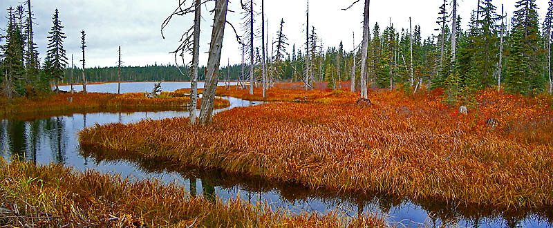 Mosquito Lake in autumn color in the Gifford Pinchot National Forest in the Washington state Cascade mountain range.
