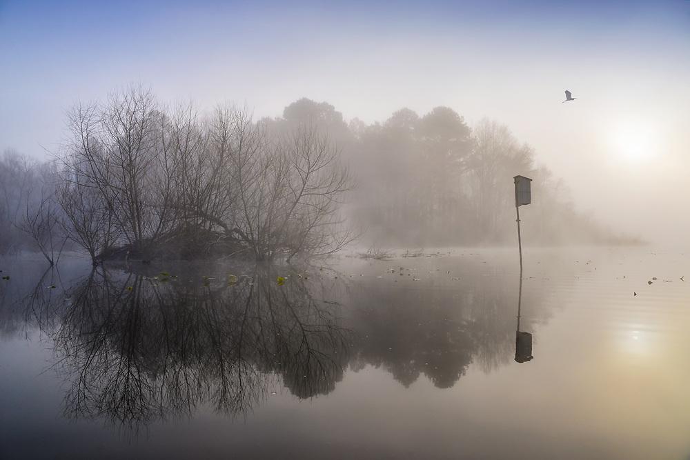 Pee Dee National Wildlife Refuge in North Carolina.<br /> Arrowhead Lake.