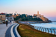 Israel, Jaffa as seen from the North at dawn. the old port on the right and the belfry of the Church and Monastery of St Peter in the centre