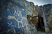 "An owl-like creature along with other figures is etched into relief against a rock on the ""Temani Pesh-wa"" trail (also ""written on rock"" trail) in Columbia Hills State Park on the Washington Side of the Columbia River Gorge. This petroglyph was removed from the famous ""Petroglyoh Canyon"" along the Columbia River before it was flooded by construction of The Dalles Dam in 1957. The Army Corps Of Engineers stored the rock art until 2004 when Temani Pesh-wa trail was built."