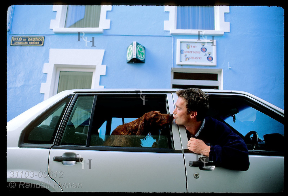 Thomas Ashe leans out driver's window to kiss his Irish setter in the back seat of his car in the town of Dingle, Ireland.
