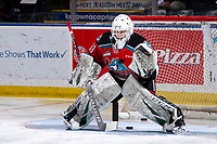 KELOWNA, BC - SEPTEMBER 28:  Cole Schwebius #31 of the Kelowna Rockets warms up in net against the Everett Silvertips  at Prospera Place on September 28, 2019 in Kelowna, Canada. (Photo by Marissa Baecker/Shoot the Breeze)