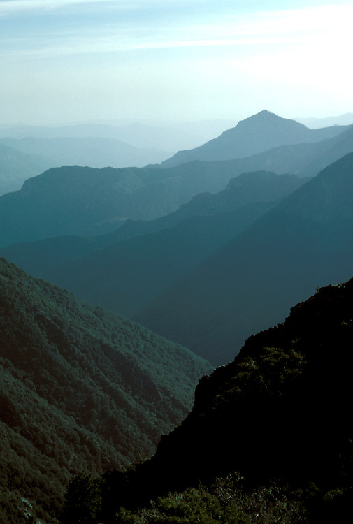 CA: Sequoia-Kings Canyon National Park, View of Sierras, layered misty mountains      .Photo Copyright: Lee Foster, lee@fostertravel.com, www.fostertravel.com, (510) 549-2202.Image: catree216.