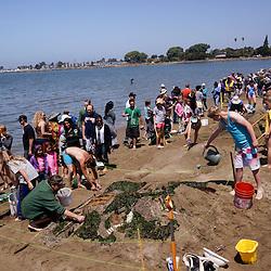 Sandcastle Contest, Alameda, California