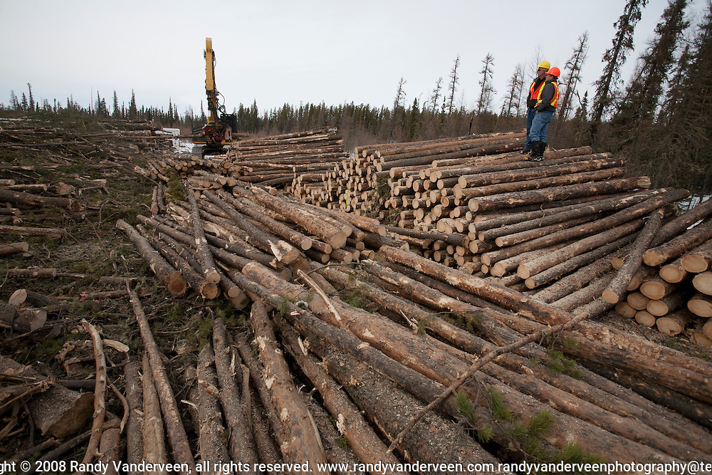 Photo Randy Vanderveen.Grande Prairie, Alberta.A processor sorts and cuts logs to length for either sawmill logs or pulp. The debris left over (branches, too small of pieces) will be ground up and sent to the local co-gen plant to be used as hog fuel in electricity production.