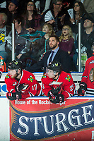 KELOWNA, CANADA - APRIL 7: Portland Winterhawks' assistant coach Oliver David watches the replay from the bench against the Kelowna Rockets on April 7, 2017 at Prospera Place in Kelowna, British Columbia, Canada.  (Photo by Marissa Baecker/Shoot the Breeze)  *** Local Caption ***