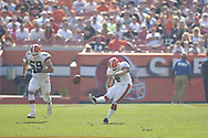 COPYRIGHT DAVID RICHARD<br />